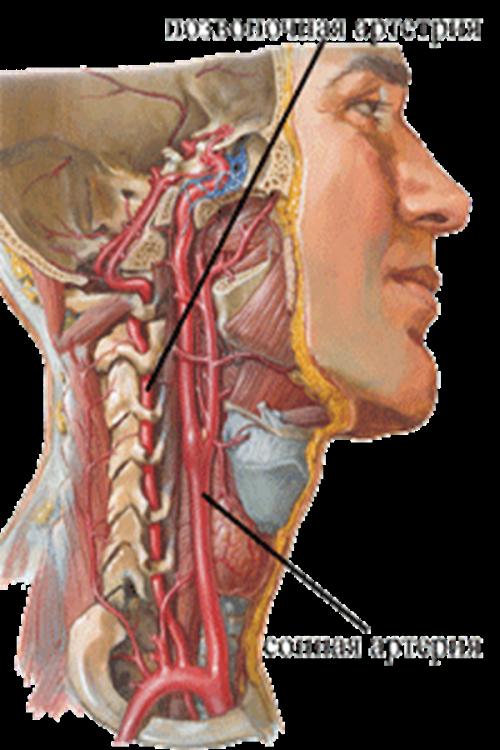 Позвоночник фораминальная грыжа лечение
