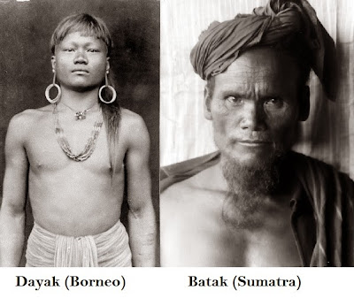 dayak and Batak