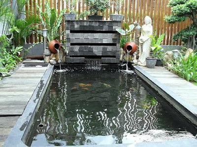 kolam minimalis dan ikan koi ~ ichafloraart