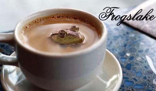 Frogslake