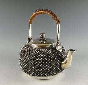 iron teapot - tetsubin