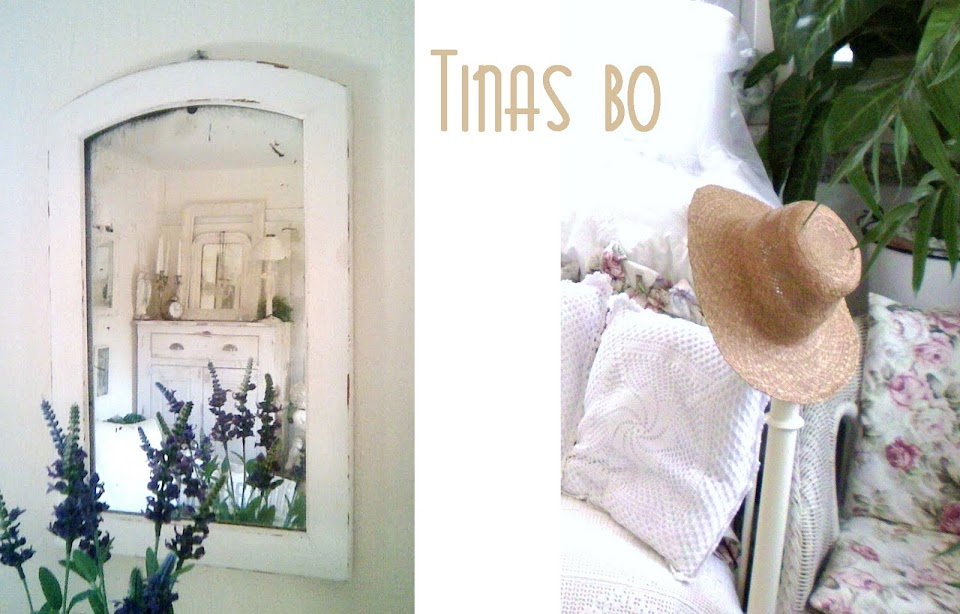 Tinas bo