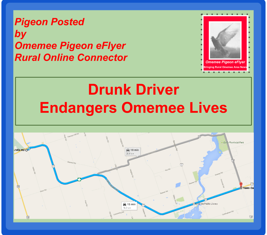 Drunk Driver Endangers Omemee Lives image shows map with two possible routes drunk driver may have taken