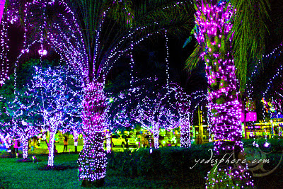 Beautiful Christmas lights on palm trees at SM Mall of Asia, Manila Philippines