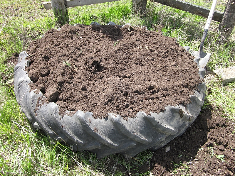 Image gallery tire garden for How to use old tires in a garden