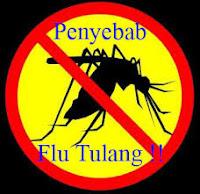 Pengobatan Herbal Flu Tulang