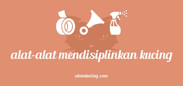 Peralatan mendisiplinkan kucing
