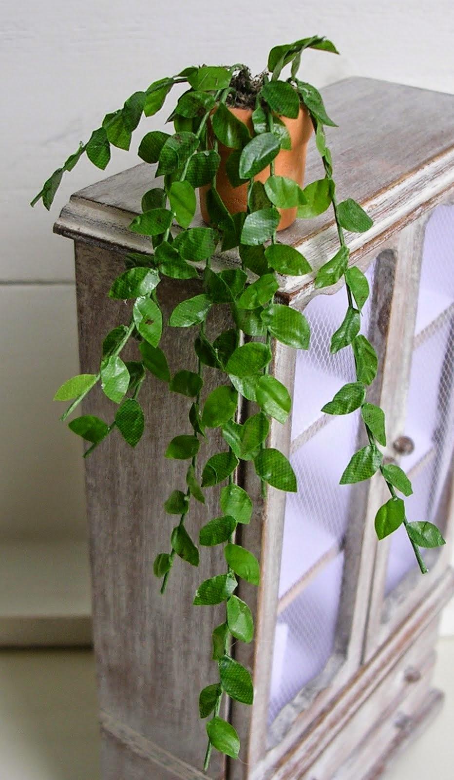 Roślina - skala 1:12
