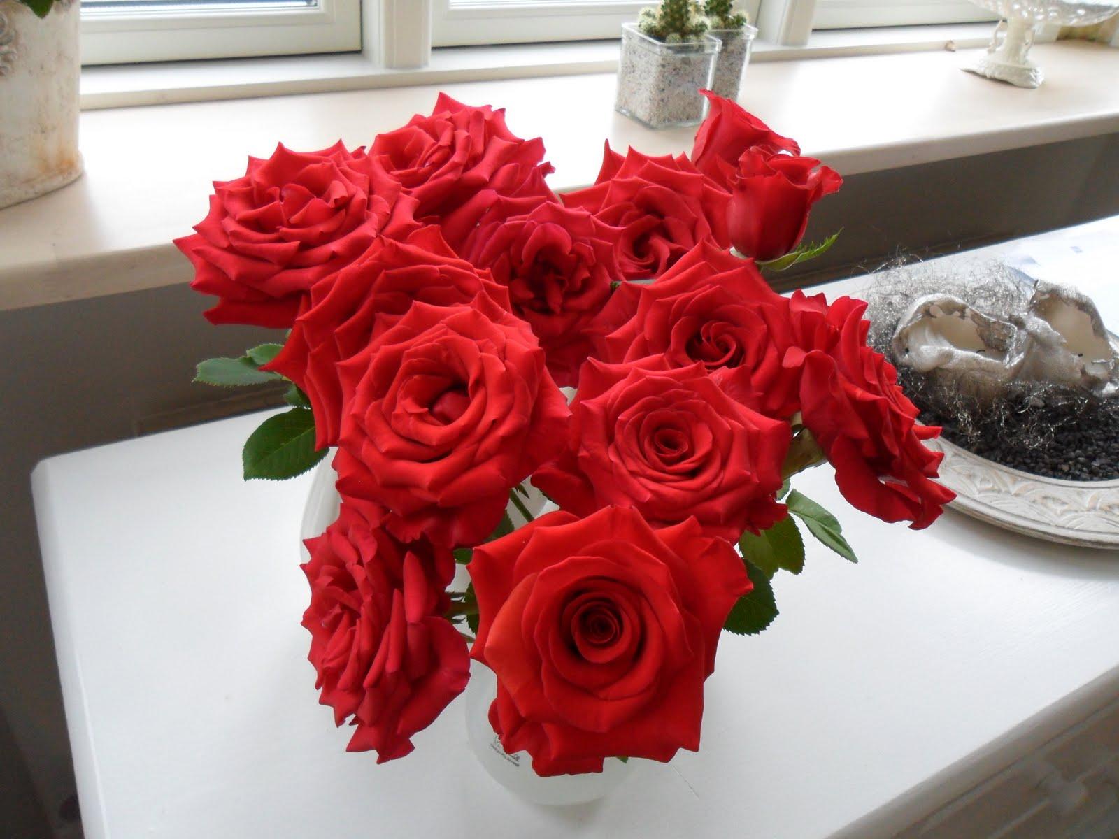 Kort & Godt med Louise Hou: Årets første buket roser fra haven