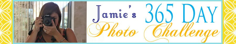 Jamie's 365 Day Photo Challenge