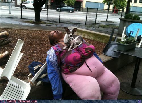 A mulher adormecida e o cachorrinho