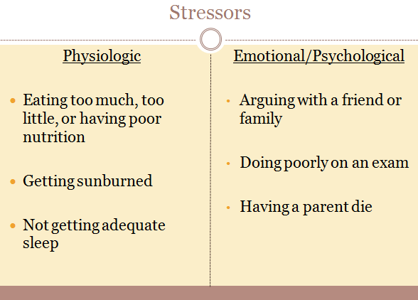 Managing Your Stress Different Kinds Of Stressors