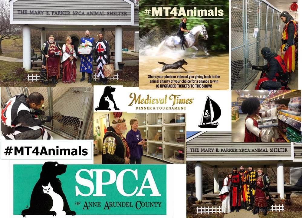 #MT4Animals Medieval Times Baltimore