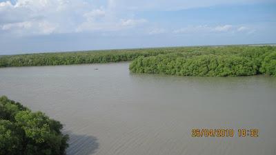 lagoon top view