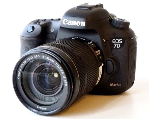 Canon EOS 7D Mark II. Digitalizer