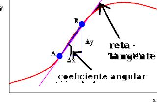 Reta tangente e o Cálculo Diferencial - Biografia de Isaac Newton