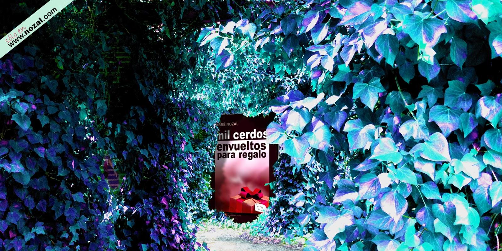 Una novela al fondo, 2014 Abbé Nozal
