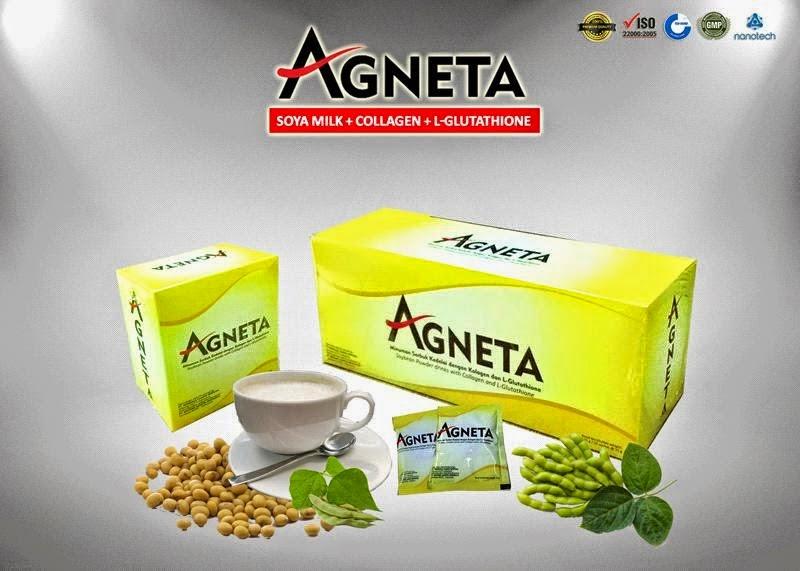 Agneta Master Anti Oksidan