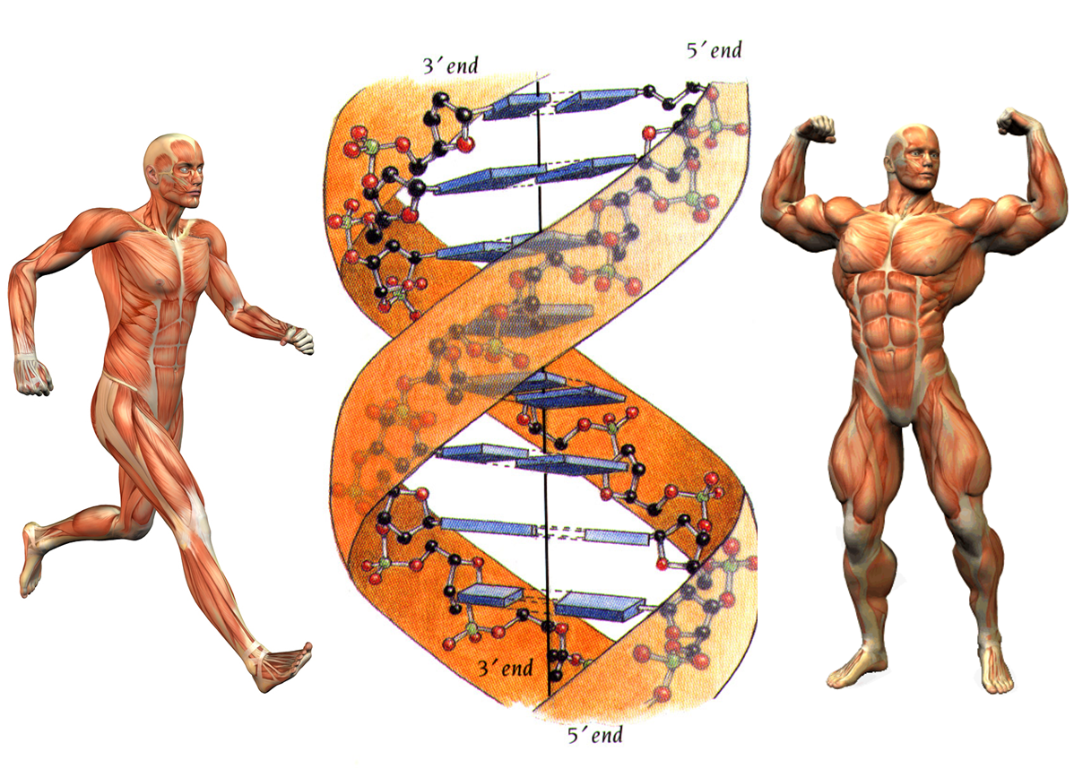 04 historia biologia: