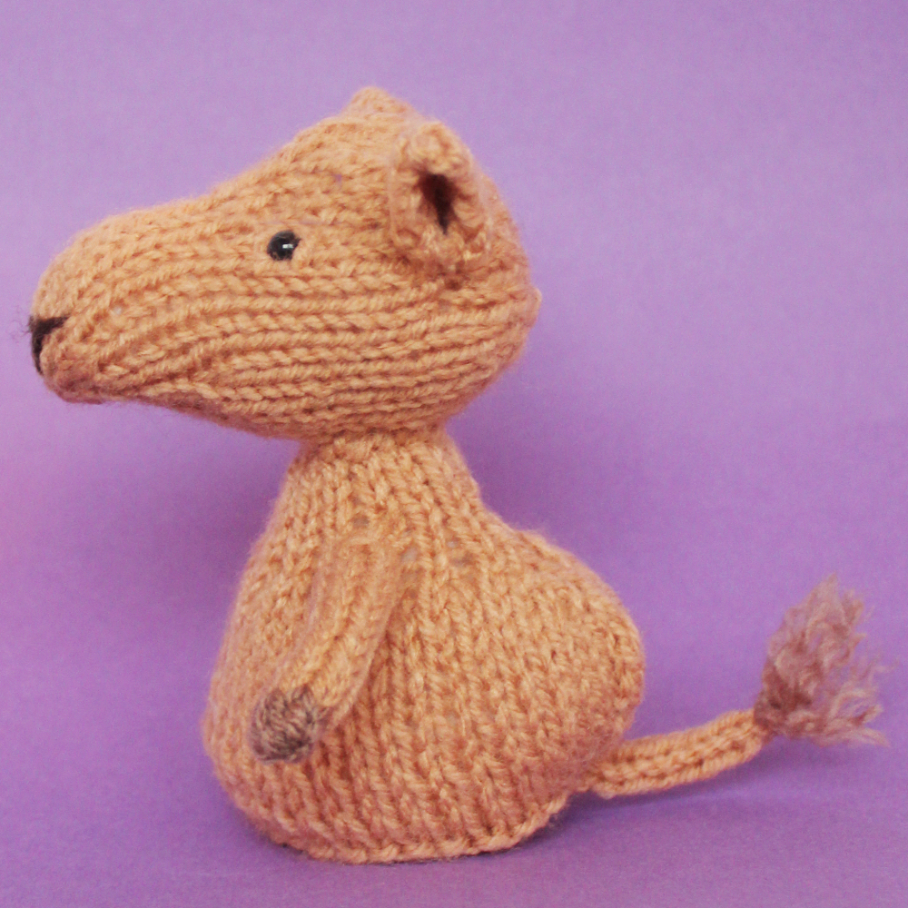 Jelly Bums: Camel Knitting Pattern
