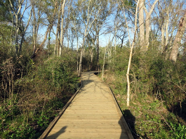 Boardwalk at Armand Bayou Nature Center.