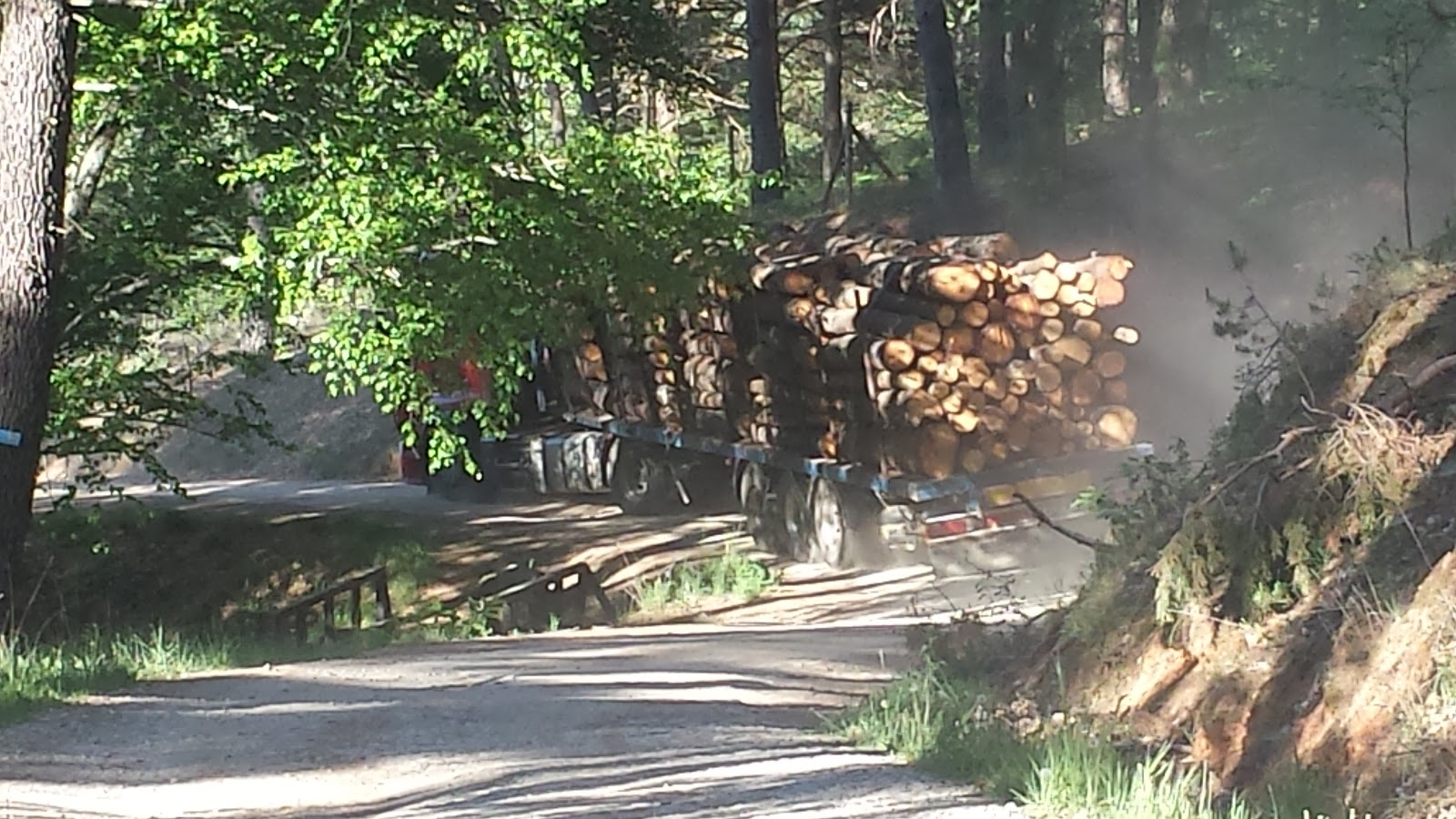un camion sale cargado de troncos, desde el paraje de lso pinos en dirección a Palomares