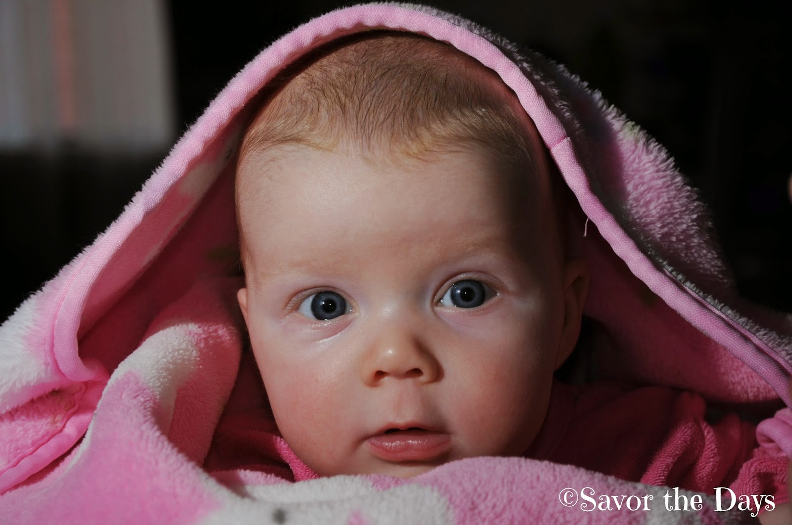 cute baby girl under pink blanket