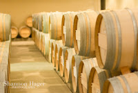 Shannon Hager Photography, Napa, Wine Barrels