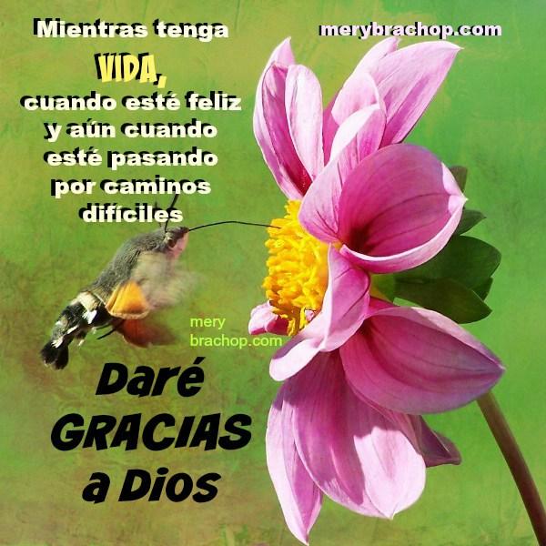 frases de aliento para dar gracias porque Dios da vida, paz, amor. Mesaje cristiano con imagen.