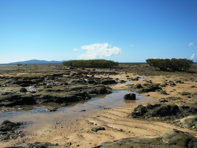 Bonsai Island at Cagbalete Island Cagbalete Island MAUBAN QUEZON, CAGBALETE ISLAND