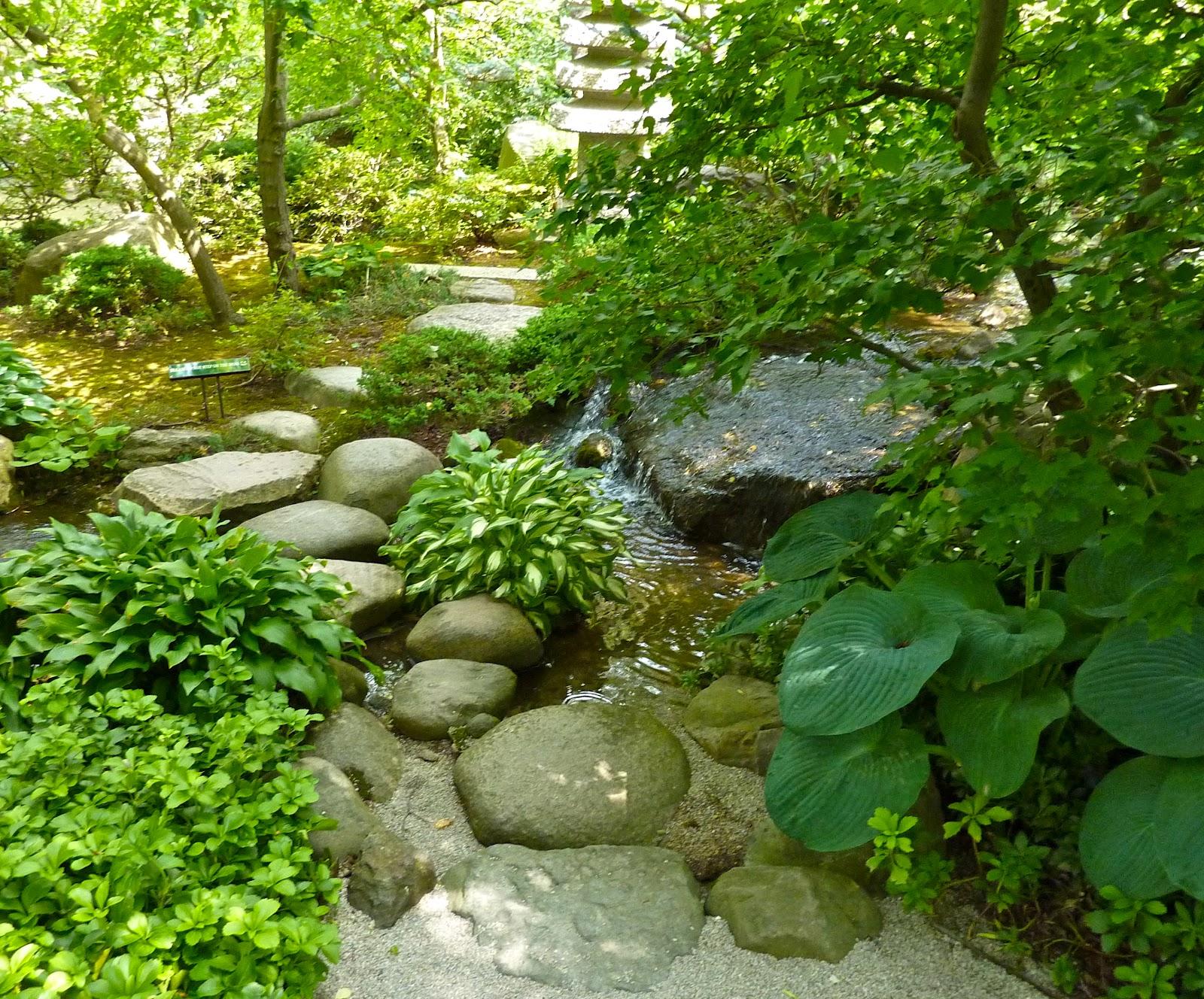 Garden of reflection japanese garden streams for Japanese garden plants pictures