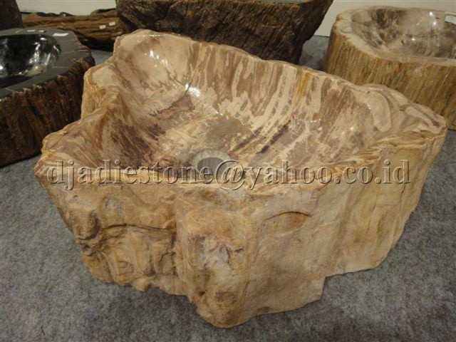 petrified wash basin - vasque wood fossil