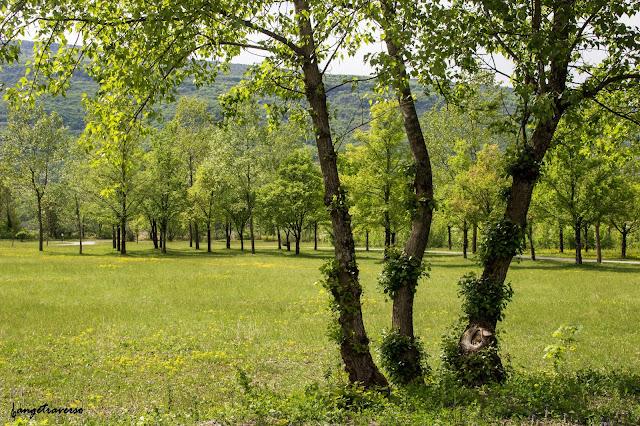 Chemin de saint-jacques de compostelle, Motz, Haute-Savoie