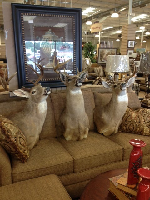 Wfo Deerheads Yep Woodstock Furniture Outlet