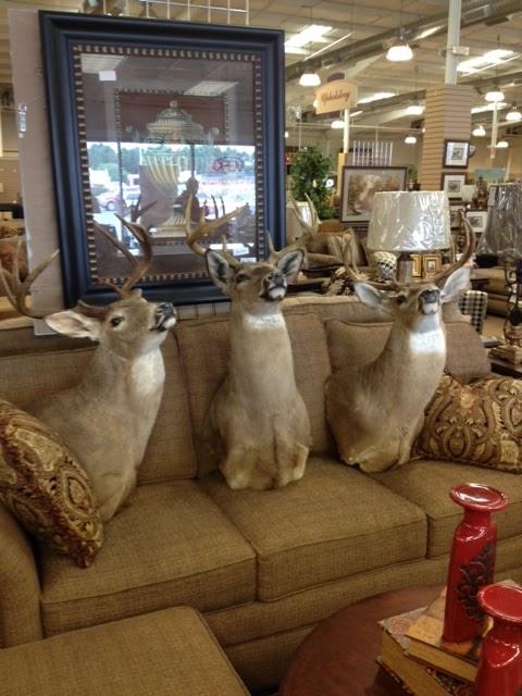 Wfo deerheads yep woodstock furniture outlet for Woodstock furniture outlet