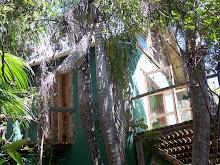 Fachada cabana 10