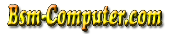 www.bsm-computer.com