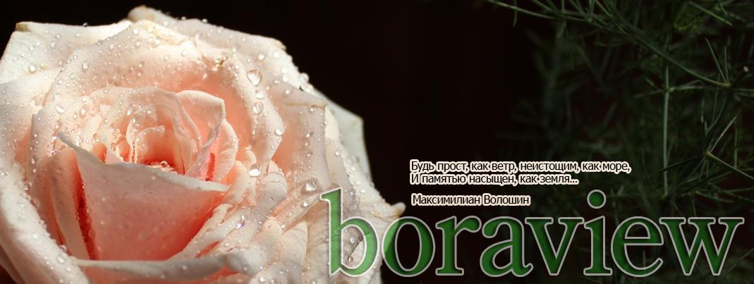 boraview