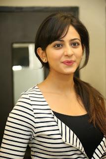Actress Rakul Preet Singh at Loukyam Success Meet  11