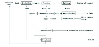 Sustainable Integrated Jatropha seed processing flow chart