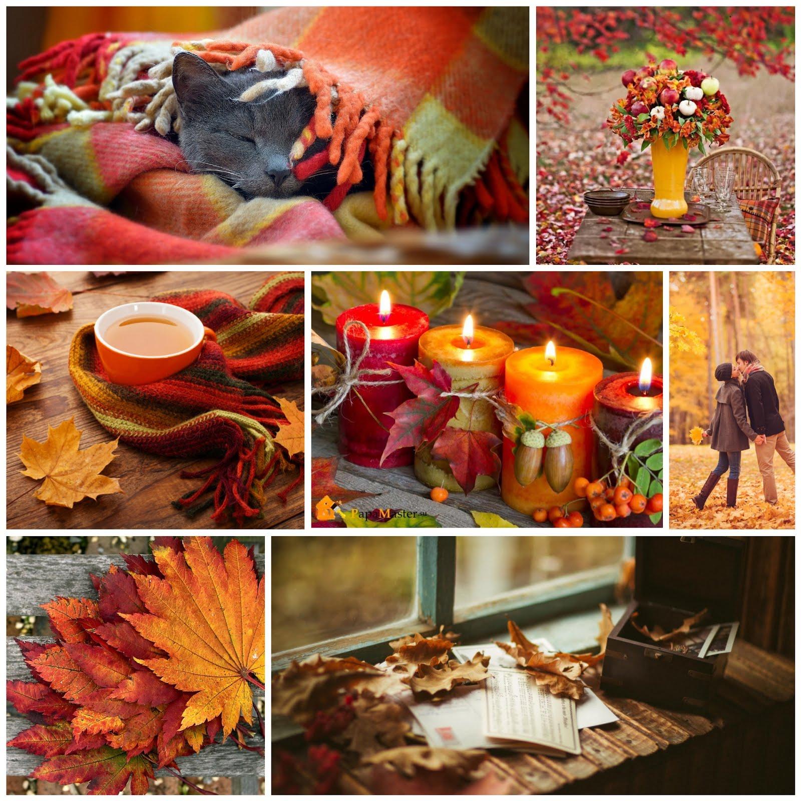 Дошка Восень...