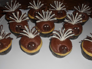"Vanilla cupcakes, chocolate frosting, and chocolate ""feathers"""