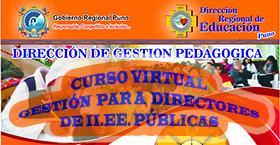Curso Virtual Directivos