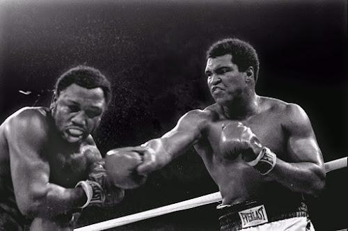 Os 10 maiores boxeadores de todos os tempos