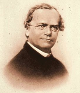 FULL WALLPAPER Gregor Mendel