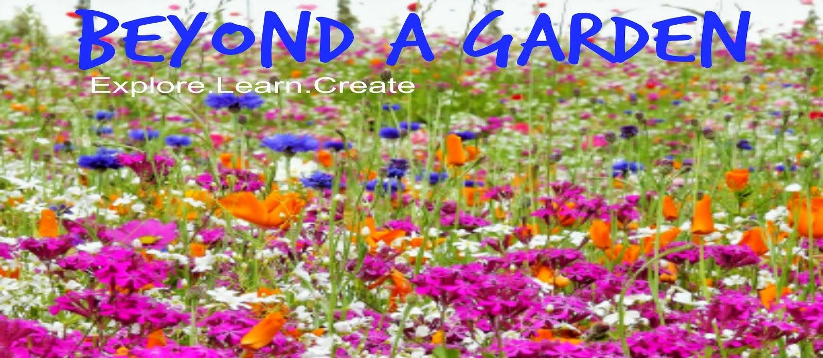 Beyond A Garden