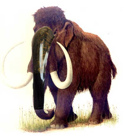 Horn u Oliphant. ¿diferencias? Mastodonte