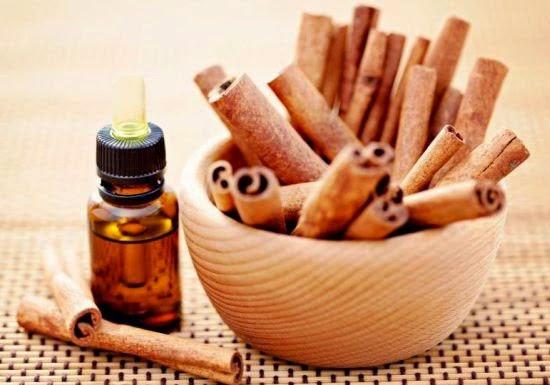 Cinnamon Oil Protocol