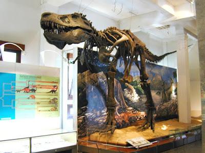 Belajar Sambil Wisata di Museum Geologi Bandung