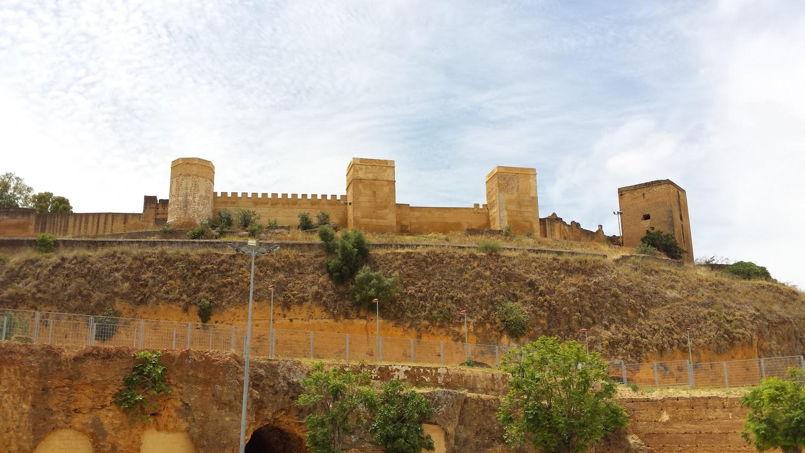 Huertos Sociales en el barrio San Miguel-El Castillo de Alcalá de Guadaíra